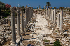 Ruinen der römischen Stadt im Reifen Lizenzfreie Stockbilder
