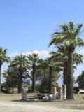 Ruinen der Spalten des alten Tempels, der Palmen und des blauen Himmels Stockfotos