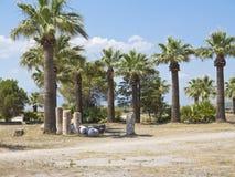 Ruinen der Spalten des alten Tempels, der Palmen und des blauen Himmels Stockfotografie