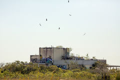 Ruinen der verlassenen Aerojet-Fabrik in den Florida-Sumpfgebieten Lizenzfreie Stockfotos