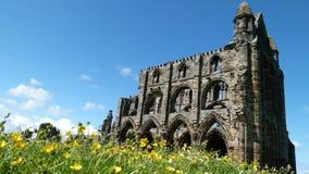 Ruinen der Whitby Abtei Stockfoto