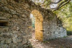 Ruinen des alten Klosters nahe Corsoli in Korsika Stockfotografie