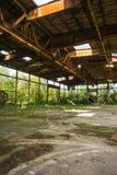 Ruinen des alten Naziflugplatzes auf baltischem Spucken Lizenzfreies Stockbild