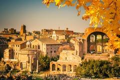 Ruinen des Forums in Rom stockfoto