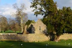 Ruinen des Franziskanerklosters in Adare Lizenzfreies Stockbild