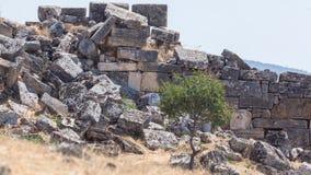 Ruinen des Hierapolis Lizenzfreies Stockbild