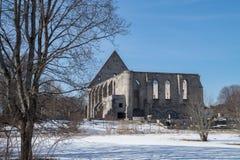 Ruinen des Klosters stockbilder