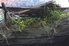 Ruinen des schäbigen Gebäudes abgedeckt durch Vegetation lizenzfreie stockfotografie