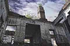 Ruinen des schäbigen Gebäudes abgedeckt durch Vegetation stockfotos