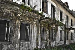 Ruinen des schäbigen Gebäudes abgedeckt durch Vegetation stockfoto