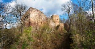 Ruinen des Schlosses Valdek in der Tschechischen Republik Lizenzfreie Stockbilder