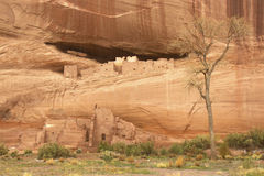 Ruinen des Weißen Hauses - Canyon de Chelly lizenzfreies stockfoto