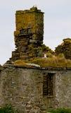 Ruinen eines Hauses und des Kamins Stockfotos