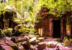 Ruinen im Wald lizenzfreies stockfoto
