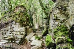 Ruinen im Wald Stockfotografie