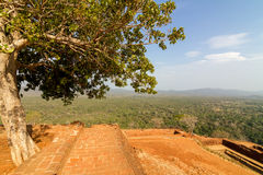 Ruinen oben auf Felsenpalast des Sigiriya Löwes Stockfotografie