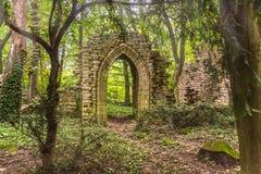Ruinen tief im Wald mit Sonnenlicht Stockfotografie
