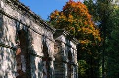 Ruinen von alten Gewächshäusern auf dem Hintergrund des Herbstwaldes Stockfotos