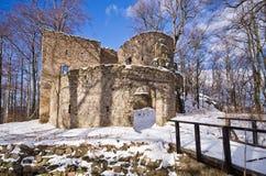Ruinen von Bolczow-Schloss in Polen Stockbilder