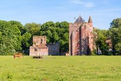Ruinen von Brederode-Schloss, die Niederlande Lizenzfreie Stockfotografie