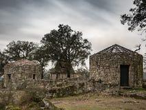 Ruinen von Citanea de Briteiros Stockfotos