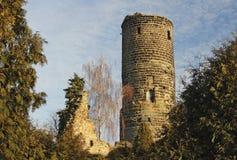 Ruinen von Jenstejn Stockbild