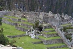 Ruinen von Machu Picchu Stockfotos