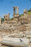 Ruines antiques d'Ehesus avec des oiseaux volant au-dessus de lui Image stock