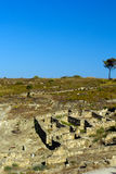 Ruines antiques de Kamiros - Rhodes Photographie stock