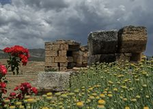 Ruines bizantines entre la nature images libres de droits