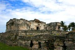 Ruines chez Tulum, Mexique Photo stock
