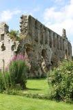 Ruines d'abbaye de Jervaulx photographie stock libre de droits