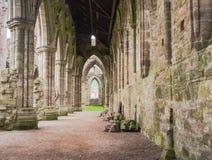 Ruines d'abbaye de Tintern, une ancienne église cistercian de la 12ème Images libres de droits