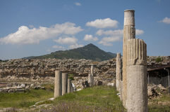 Ruines d'agora dans l'annonce Maeandrum, Turquie de magnésie Photographie stock libre de droits