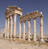 Ruines d'Apamea Photographie stock