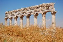 Ruines d'Aphamia, Syrie Photos stock