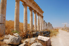 Ruines d'Aphamia, Syrie Photo stock
