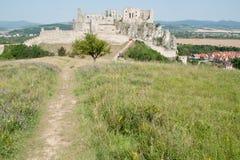 Ruines de Beckov Photographie stock