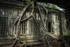 Ruines de Beng Mealea photographie stock