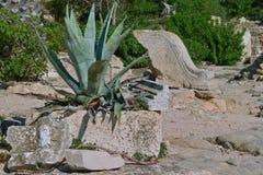 Ruines de Carthage, Tunisie Photographie stock libre de droits
