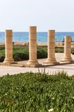 Ruines de colonnes sur le littoral césarien Architecture romaine de civilisation image libre de droits