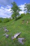Ruines de Costesti Dacian Image stock