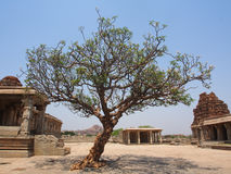 Ruines de Hampi Images libres de droits
