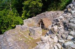 Ruines de jungle au Mexique Photographie stock