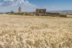 Ruines de la Sicile Images libres de droits