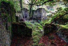 Ruines de moulin Photographie stock