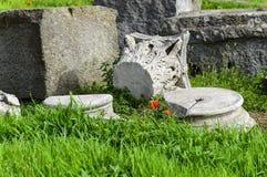 Ruines de Pompeii : restes des colonnes antiques se trouvant sur l'herbe avec des pavots images libres de droits