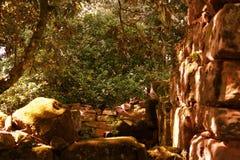 Ruines de San Ignacio, Misiones, Argentine Photographie stock libre de droits