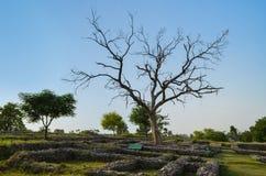 Ruines de Taxila image libre de droits