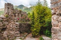Ruines de vieille barre, Monténégro Photos libres de droits